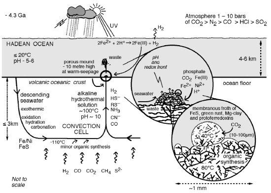 Les systèmes hydrothermaux océaniques, des réacteurs pour la chimie prébiotique