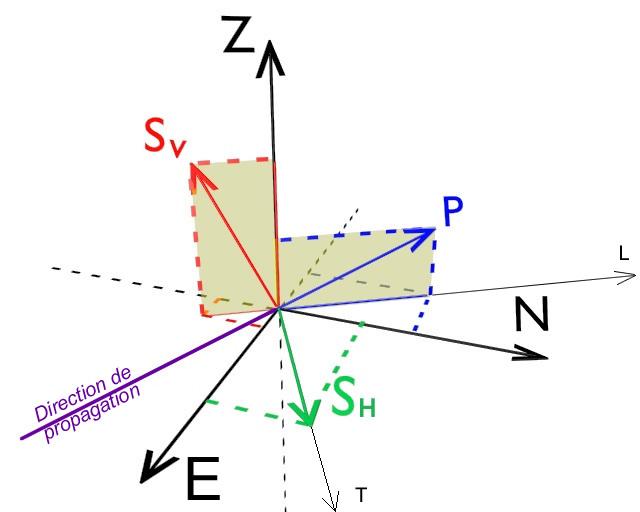 Projection sur les 3 axes d'un sismomètre des déplacements de matière liés au passage des ondes P et S (décomposée en SH et SV)