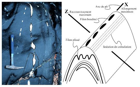 Filons de granite plissés ou boudinés selon leur orientation dans les plis P2 de la zone axiale de la Montagne Noire (Gorges d'Héric)