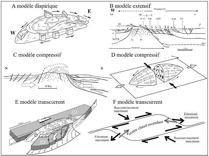 Différents modèles de mise en place du dôme migmatitique de la zone axiale de la Montagne Noire