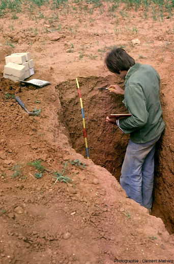 Les fosses pédologiques permettent l'étude des sols