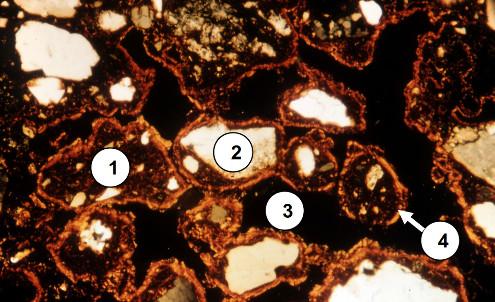 Un exemple de microstructure