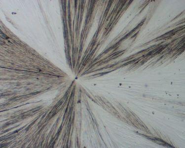 Cristaux de soufre β en aiguille au microscope, lumière polarisée non-analysée