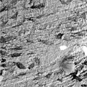 Vugs dans les sols martiens