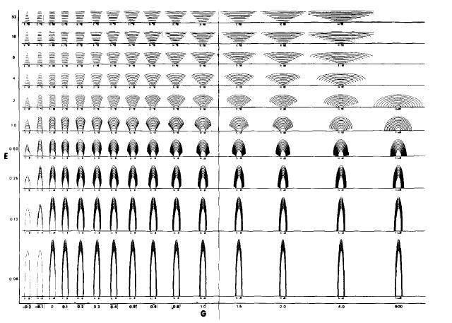 Description mathématique de la forme des stromatolithes