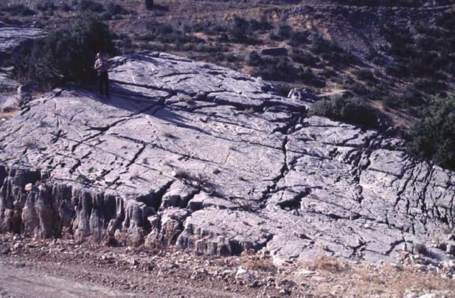 Dalle calcaire fracturée