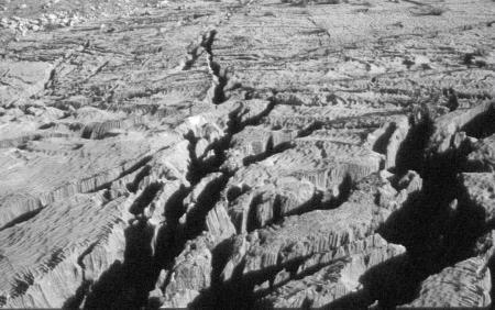 Champ de lapiaz (après élargissement des fissures par infiltration de l'eau de pluie)