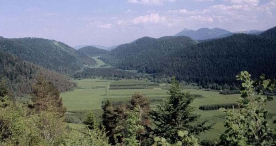 Poljé dans le pays de Sault (Aude, Pyrénées)