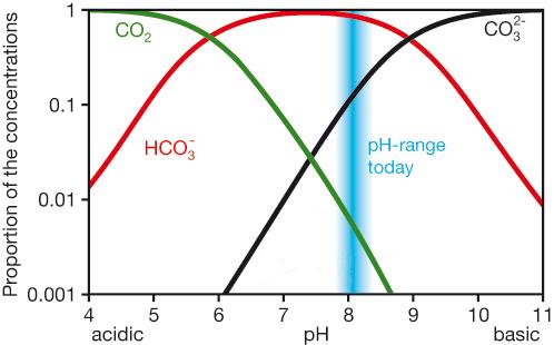 Le système carbonate dans l'océan: proportion des trois formes de C inorganique dissous dans l'eau