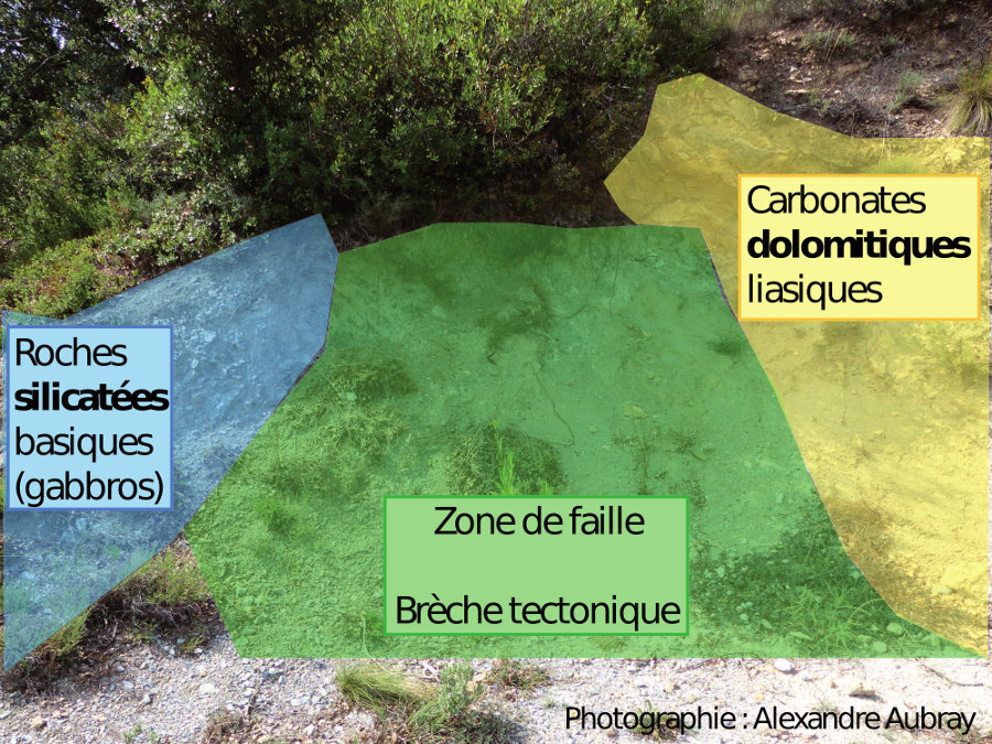 Photographie interprétée de l'affleurement (serpentino-)talco-chloriteux de al route de Felluns
