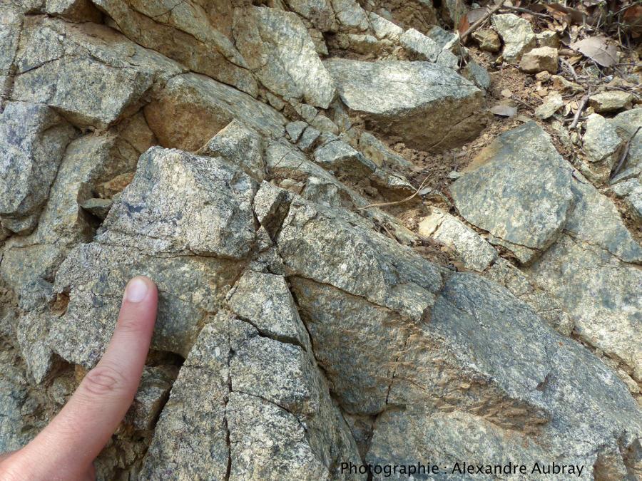 Détail des roches silicatées grenues métasomatisée