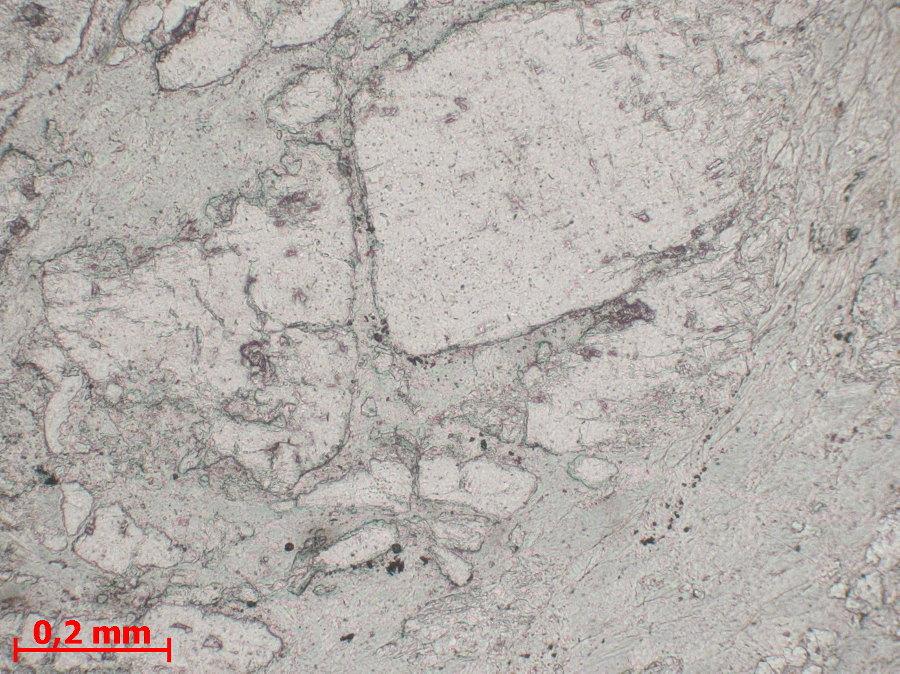 Détail d'un porphyroclaste de plagioclase microfaillé, LPNA