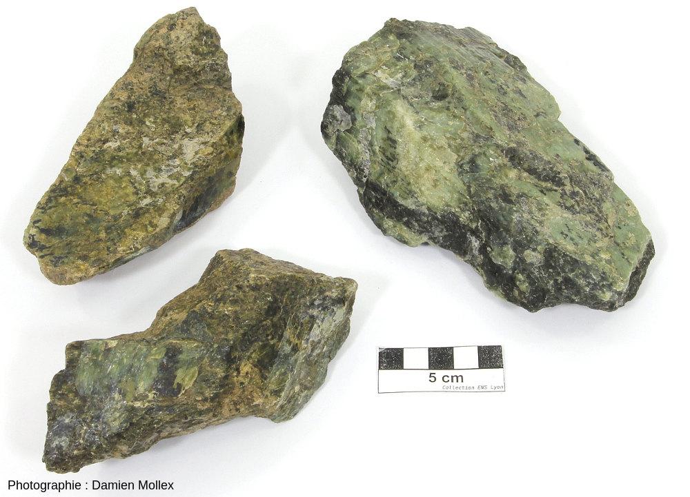 Péridotites serpentinisées, échantillons récoltés au Sud du massif de Salvezines