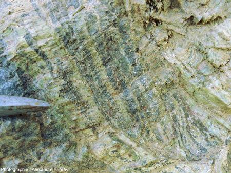 Détail montrant de la serpentine sur l'affleurement de péridotite mantellique au niveau du village de Bestiac