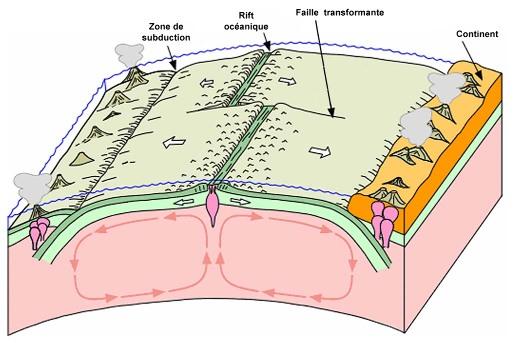 """Schéma, un peu plus """"scientifique"""", du fonctionnement du globe dans le modèle de la tectonique des plaques"""