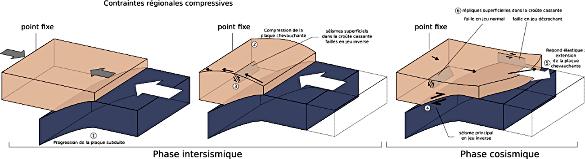 Un modèle conceptuel pour expliquer le rebond élastique au cours du séisme de Tohoku Oki