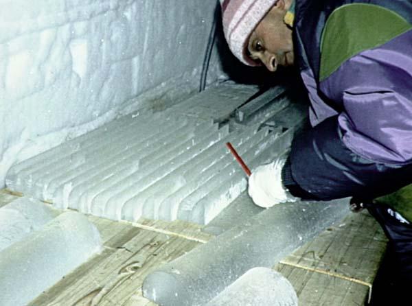 Carottes de glace