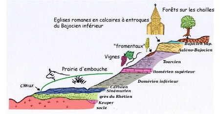 Log synthétique et occupation des sols en Brionnais