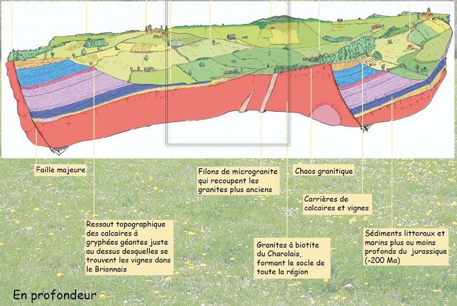Écorché géologique du Brionnais, géologie du sous-sol