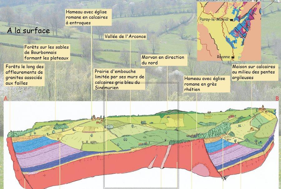 Écorché géologique du Brionnais, occupation de la surface