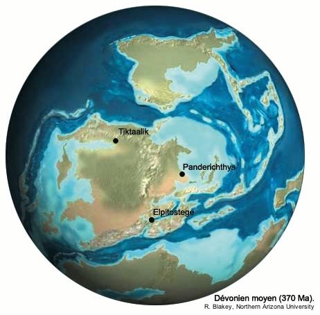 Localisation paléogéographique des découvertes de trois fossiles de Sarcoptérygiens du Dévonien supérieur: Elpitostege, Panderichthys et Tiktaalik