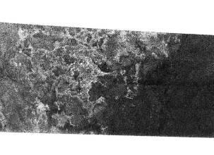 Paléo(-?)lignes de rivages