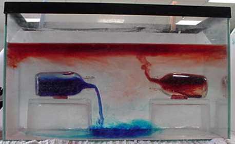 Début de déversement des 2 flacons dans l'aquarium