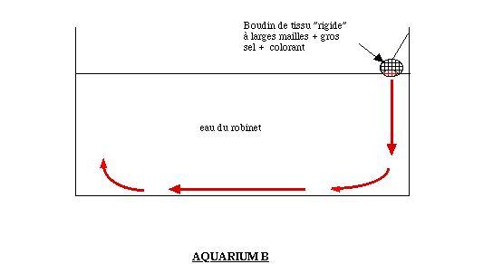 Schéma du dispositif B