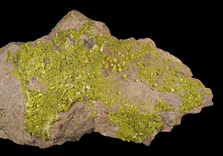 Échantillon d'Autunite de Grury, Saône-et-Loire (30×15cm)
