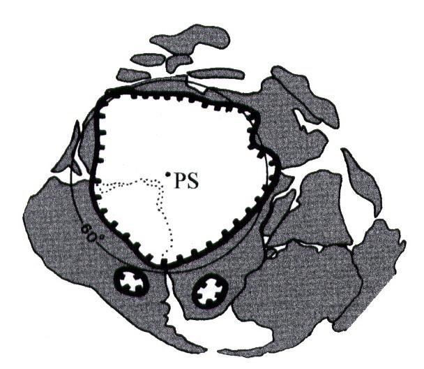Extension probable de la calotte glaciaire sur le Gondwana à l'Ordovicien terminal