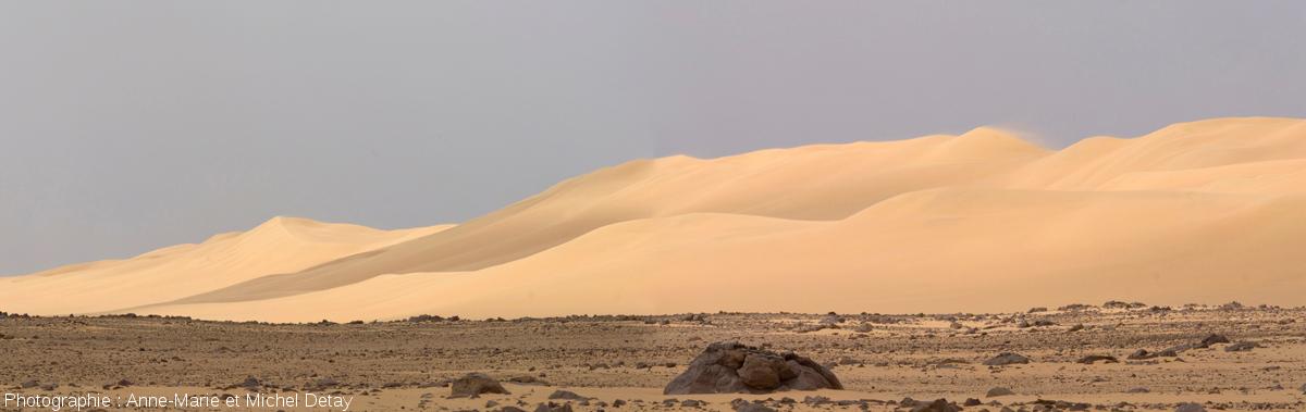 Couloir interdunaire parsemé de blocs rocheux de taille variable dans le désert libyque