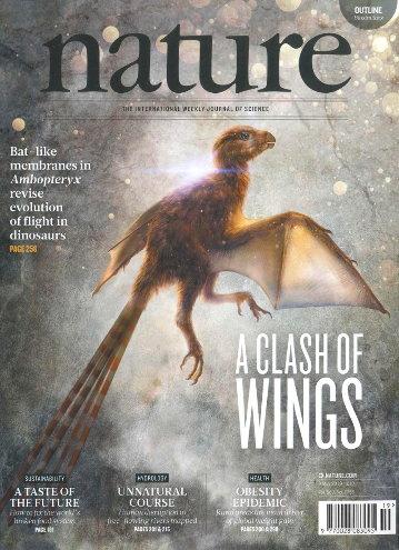 Ambopteryx, vue d'artiste à la «une» de Nature du 9 mai 2019