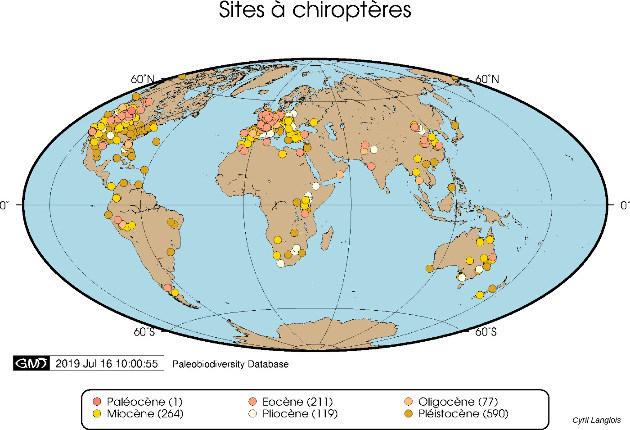 Répartition cartographique des spécimens de chiroptères enregistrés dans la Paleobiodiversity Database