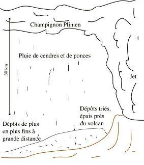 Schématisation du panache Plinien et des dépôts associés