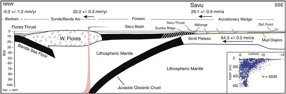 Coupe schématique NNW-SSE à travers les îles de Flores et Savu