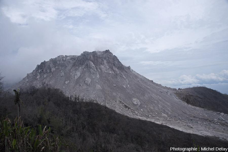 Le dôme du Paluweh vu du coté SO, montrant la zone totalement dévastée par où s'écoulent les CDP importants qui dévalent au Sud vers la mer