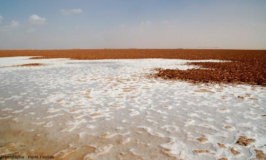Chott salé de la région de Siwa (Égypte), qui ressemble à ce que seraient les bords de mer s'il n'existait pas une (des) pompe(s) à sodium extrayant le sel de la mer