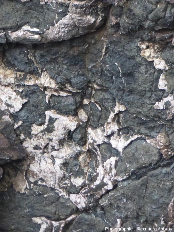 Autre détail des pillow-lavas de la pointe de Lostmarc'h